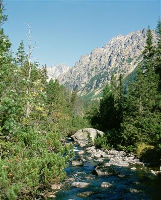 פלסו לבודי, הרי הטטרה בסלובקיה