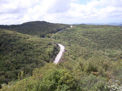 הר מירון. צילם,אריאל רן. מתוך אתר פיקיוויקי