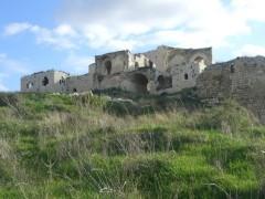מבצר אנטיפטרוס. חיים בן אודיז. מתוך אתר פיקיוויקי