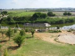 נחל אלכסנדר, תצפית אל גשר הצבים. צילום:דר אבישי טייכר. מתוך אתר פיקיוויקי
