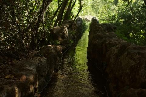 נחל עמוד. מילם:צילום: אורן פלס. מתוך אתר פיקיוויקי