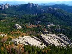 היער הלאומי גבעות שחורות