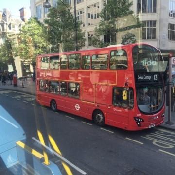 אוטובוסים אדומים,