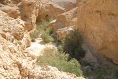 PikiWiki_Israel_34913_Geology_of_Israel (Custom)