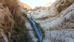 PikiWiki_Israel_33831_Wadi_of_David (Custom)