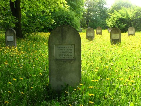 בית הקברות בחלם