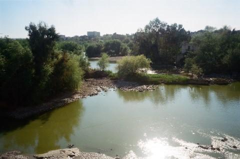 הגוואדאלקיוויר בקורדובה. צילום אביטל ענבר