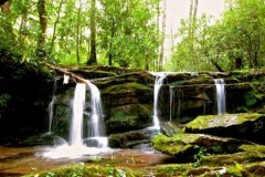 great-smoky-mountains-waterfall-adventure-in-gatlinburg
