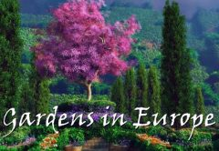 Most Beautiful Gardens in Europe