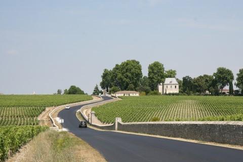סיור של חצי יום וטעימות יין בכרמי בורדו