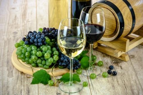 סיור יין בקוויבק מונטריאול עם ארוחת צהריים גורמה אופציונלית וטעימות גבינה