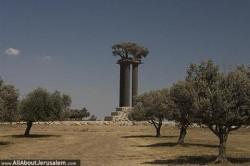 פסל עצי הזית סמוך לקיבוץ רמת רחל http://allaboutjerusalem.com/he