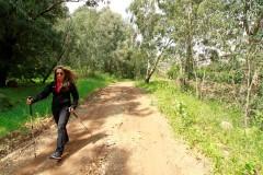 מסלול טיול בצוק מנרה - צילום ששון ניסים