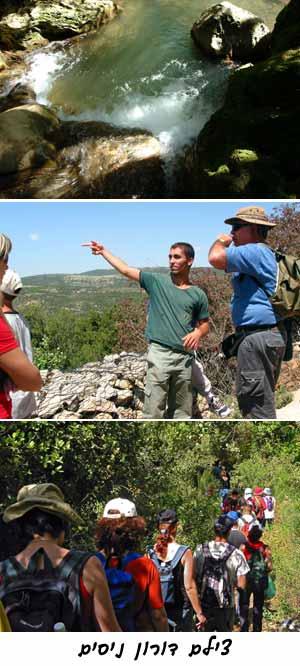 מסלול טיול, יחיעם, הר מירון, קבר רשבי , לנחל עמוד