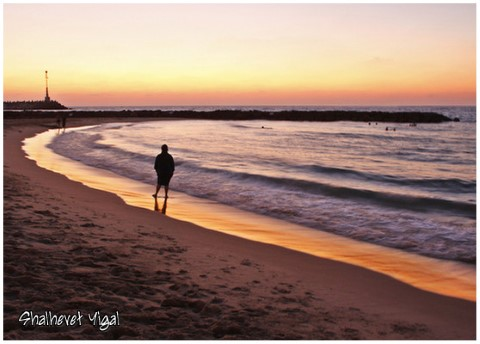 מישור החוף בשקיעה. צילם יגאל שלהבת