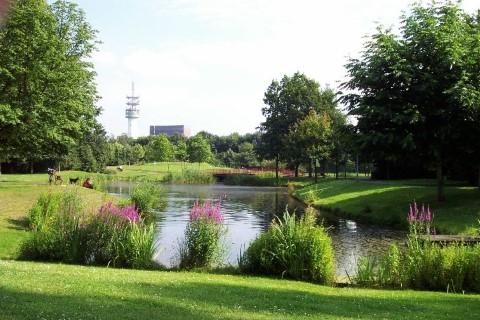 פארק המלכה ביאטריס