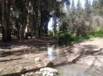 נחל הקיני 4 - צילם בר זוהר יאיר
