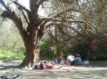 נחל הקיני 9 - צילם בר זוהר יאיר