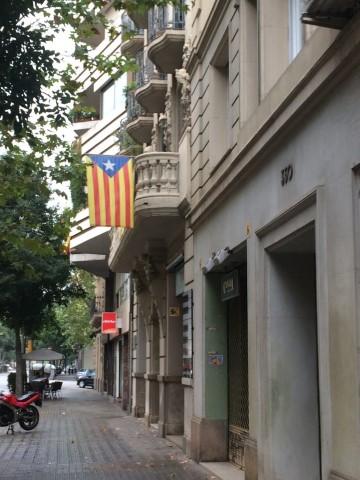 דגל קטלוניה המתנוסס ממרפסות רבות ((צילמה: נטלי שוחט)