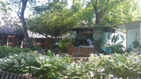 בית הקפה של ההוסטל
