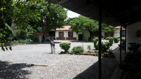 מקום לינה מומלץ במיוחד למשפחות בליווינגסטון בזמביה