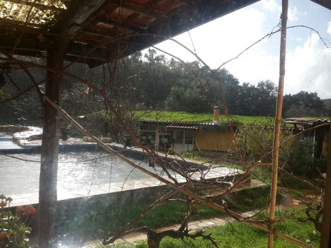 בוקר במרפסת - גגות בתי ההוביטים מכוסים באדמה - וגדלה עליהם צמחייה