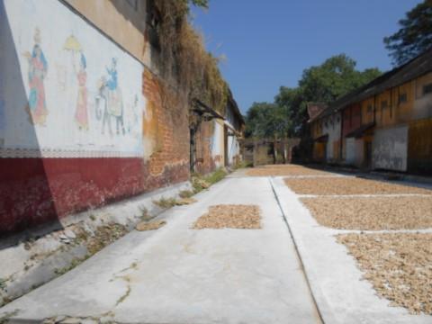 מקום איחסון לתבלינים - צילום נועה הראל