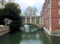גשר האנחות, קימברידג'