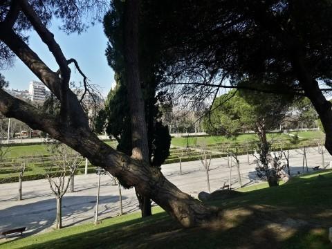 פארק אדוארדו השביעי (Eduardo VII Park) בליסבון - חורשה, אחריה מסדרון סימטרי, ואחריה שדרה של מלונות יוקרה. לא מרשים.