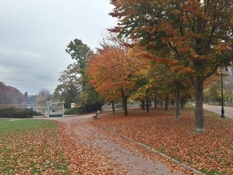 בוקר סתווי בפארק ראש הזהב Parc de la Tête d'Or - ליון