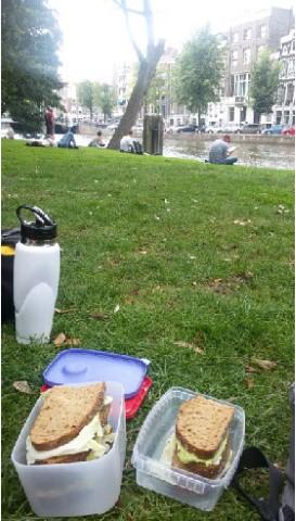 תרבות הבילוי בפארקים באמסטרדם- אלטרנטיבה מהנה שמספקת איזון לקצב המהיר של העיר
