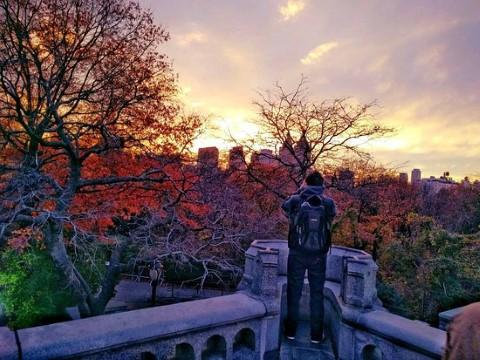 סיור לאור שקיעה בסנטראל פארק, ניו יורק