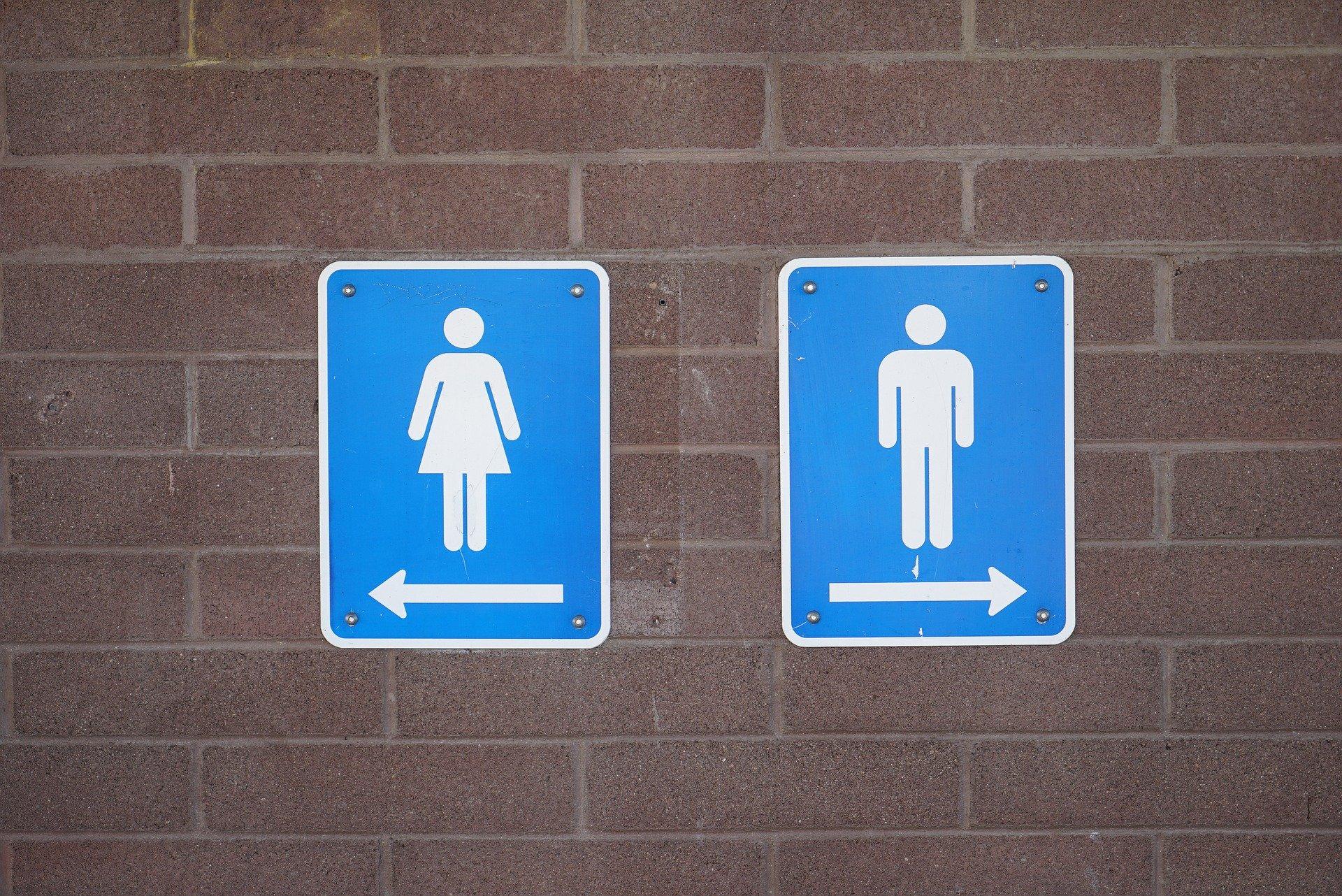 הפסקת שירותים בלתי נשכחת: סלפי בשירותים המדהימים בעולם