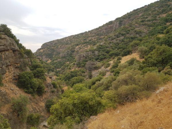 מקטע 6 של שביל ישראל: מחניון הפיתול לחניון נחל עמוד תחתון