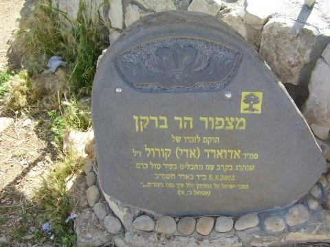 מצפור הר ברקן - צילום:דר אבישי טייכר. מתוך אתר פיקיוויקי